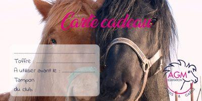 carte-cadeau4